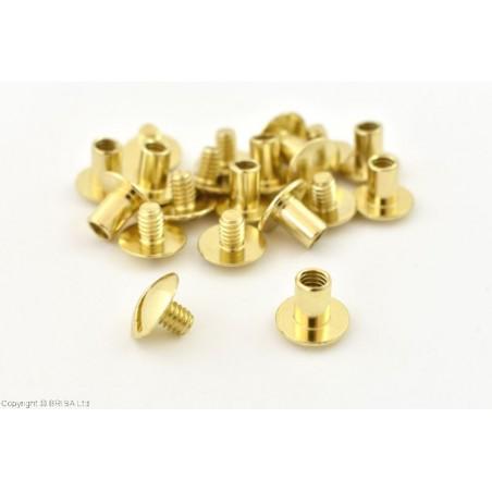 Kniedė su sriegiu Chicago Brass -7 mm/10